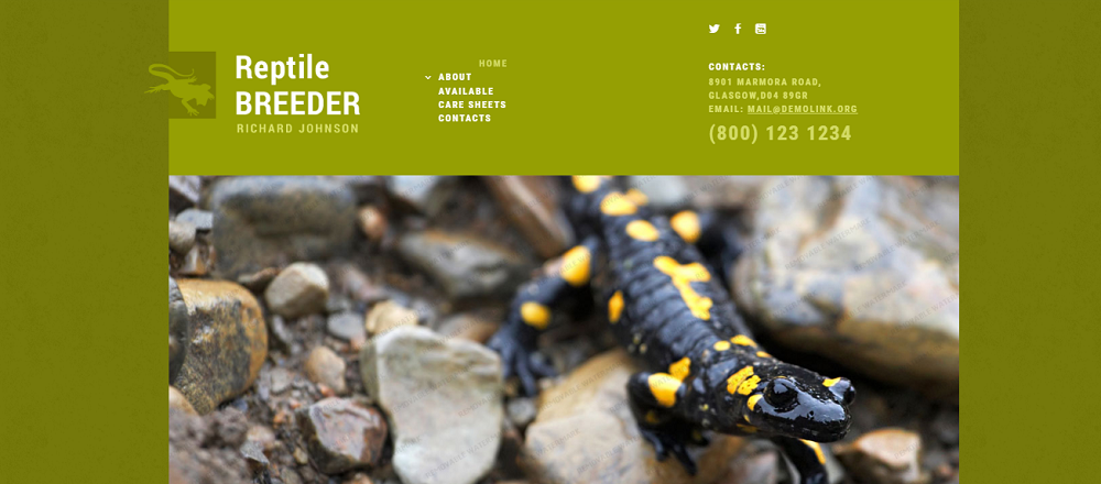 Exotic Pets Responsive Website Template