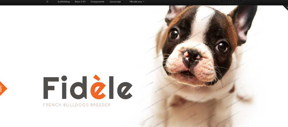 Dog Website Template