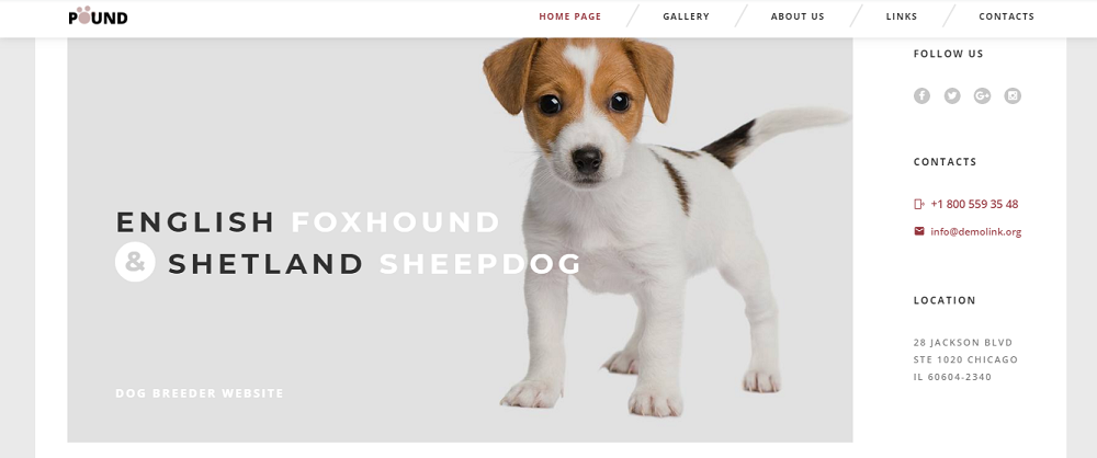 50 Best Animal and Pets HTML templates