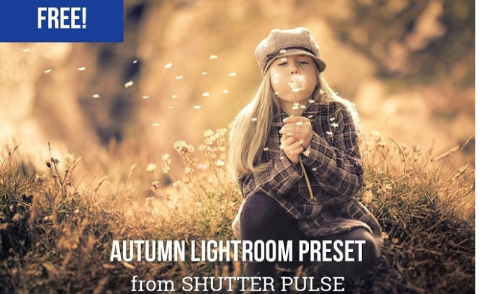 20 Free Adobe Lightroom Autumn Presets for Photographers