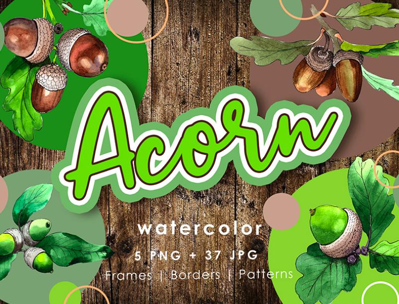 Acorn Plant PNG Watercolor Creative Set Illustration