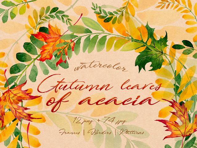 Autumn Leaves Of Acacia PNG Watercolor Set Illustration