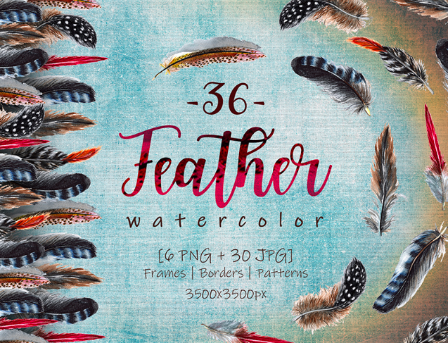 Delightful Feathers PNG Watercolor Set Illustration
