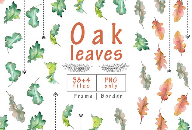 Oak Leaves PNG Watercolor Set Illustration