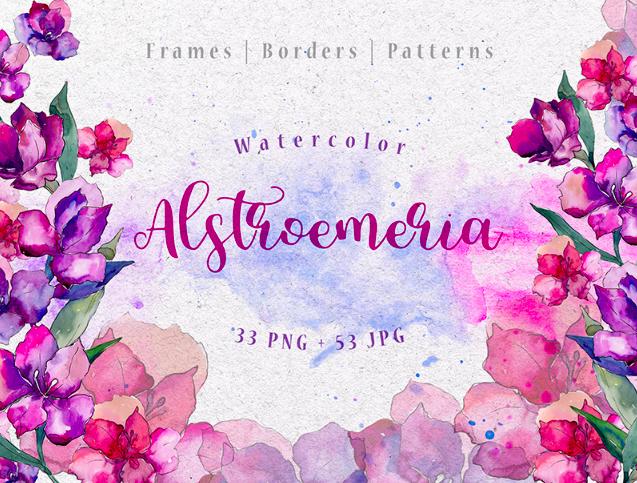Purple Alstroemeria PNG Watercolor Set Illustration