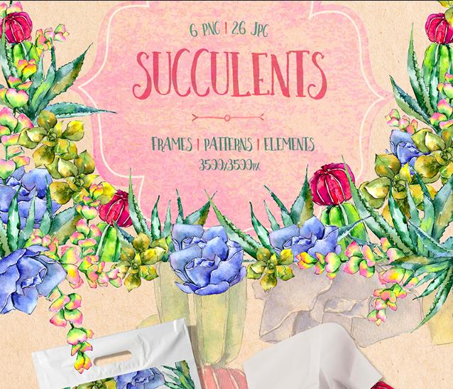 Succulents PNG Watercolor Set Illustration