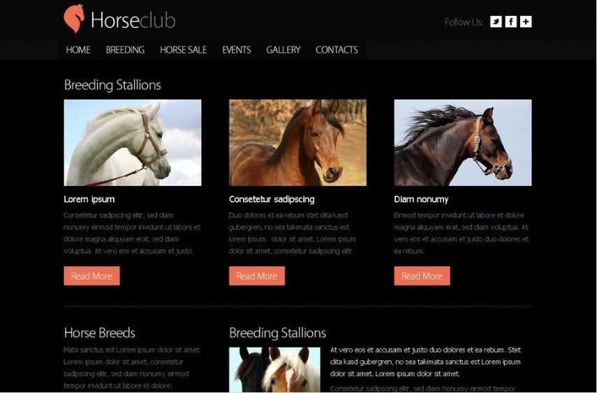 Free Website Template - Horse Club Website Template