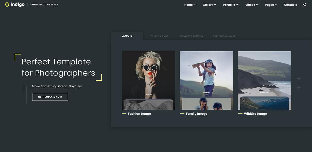 Indigo - Photo & Video Portfolio Multipurpose HTML Website Template