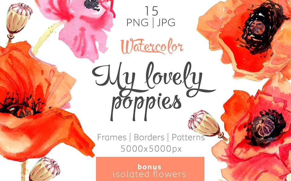 My Lovely Poppies - PNG Watercolor Illustration