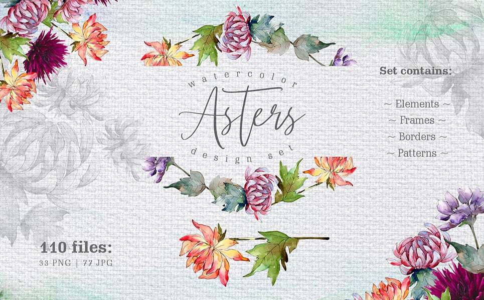 Watercolor Asters PNG Design Set Illustration