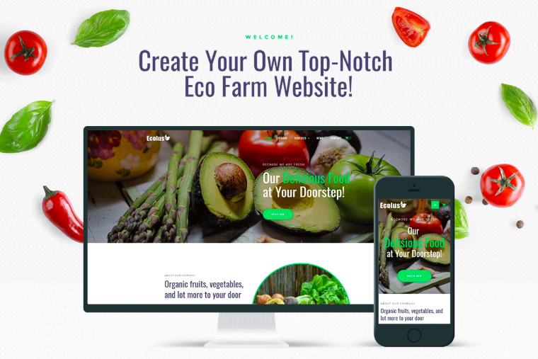 Ecolus - Organic Food Delivery E-Commerce Modern Elementor WordPress Theme