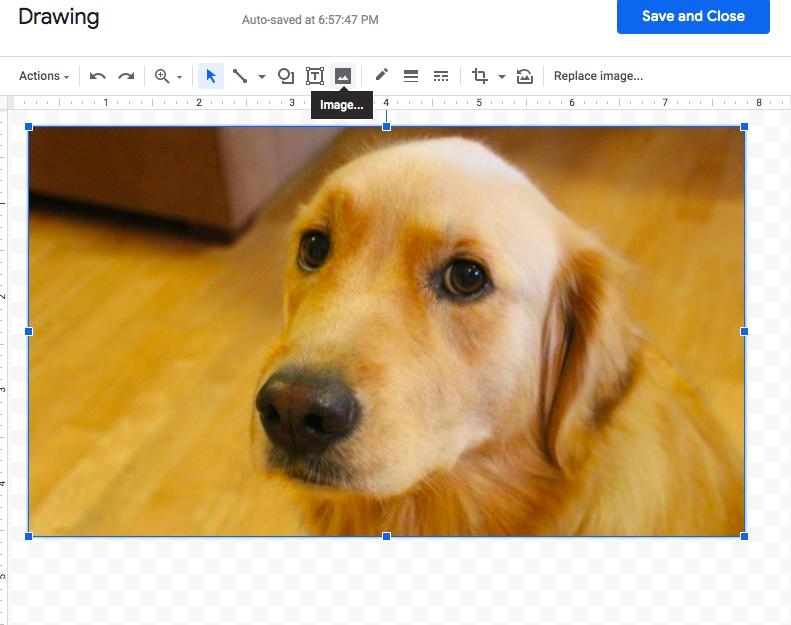 image button toolbar