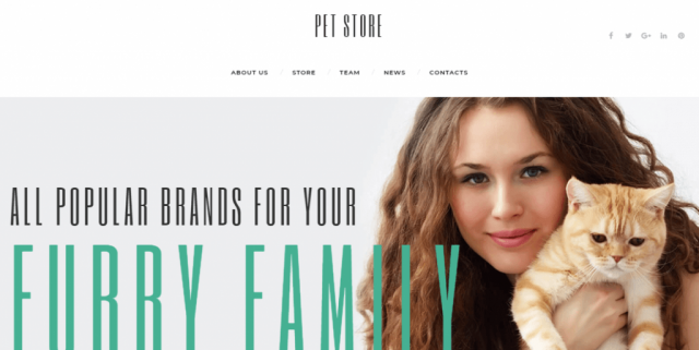 PetStore - Pets Supplies Shop Responsive WooCommerce Theme WooCommerce Theme