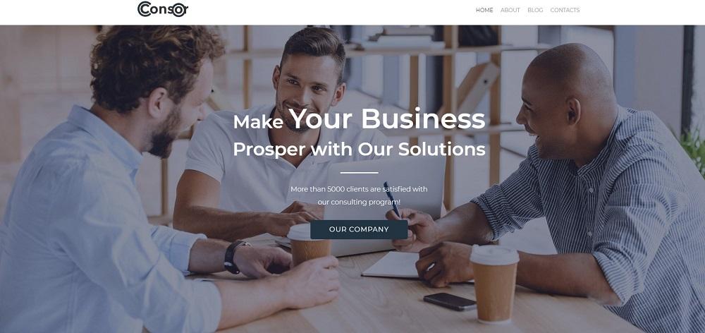 Consor lite - Business Consulting Elementor WordPress Theme