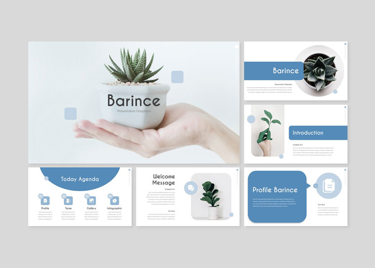 BARINCE PowerPoint Template.