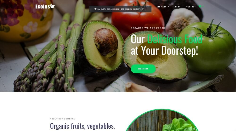 Ecolus - Organic Food Delivery ECommerce Modern Elementor WordPress Theme