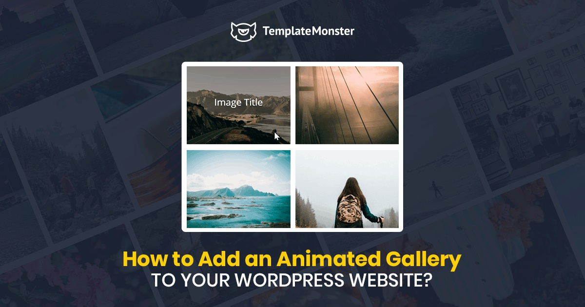 Add an Animated Gallery to WordPress Website.