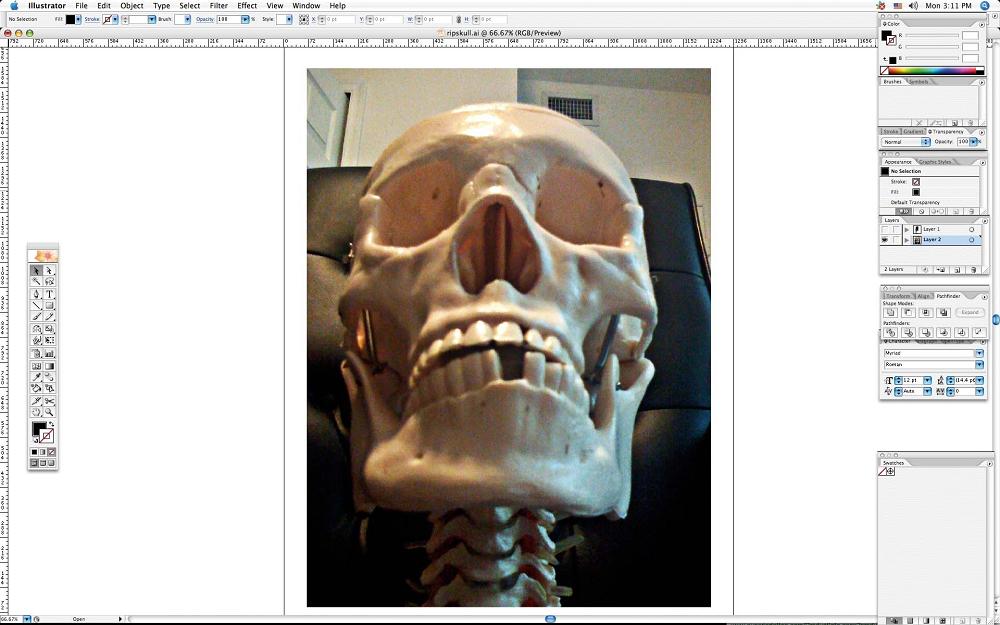 create grunge skull01