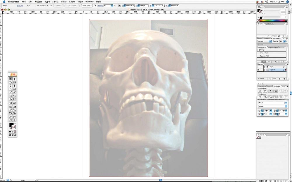 create grunge skull03