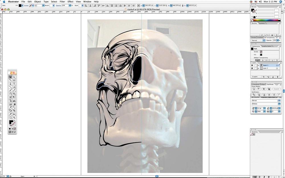 create grunge skull04
