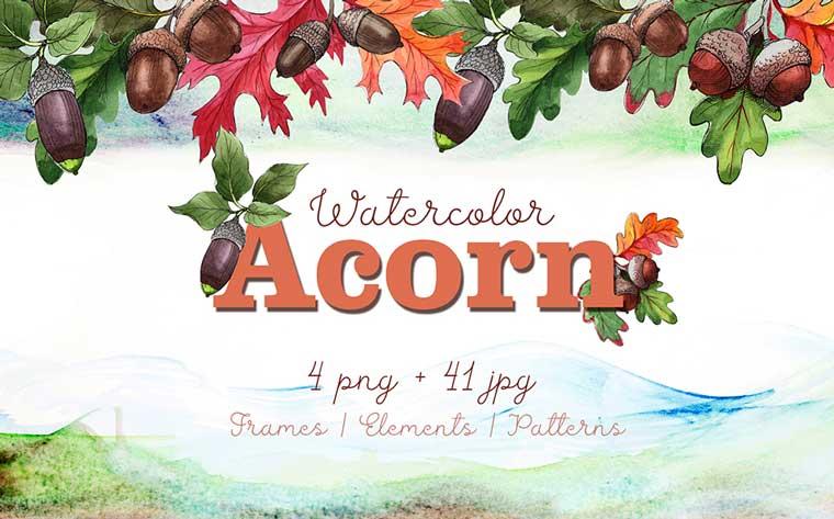 Autumn Acorn Leaf and Plant PNG Watercolor Set Illustration.