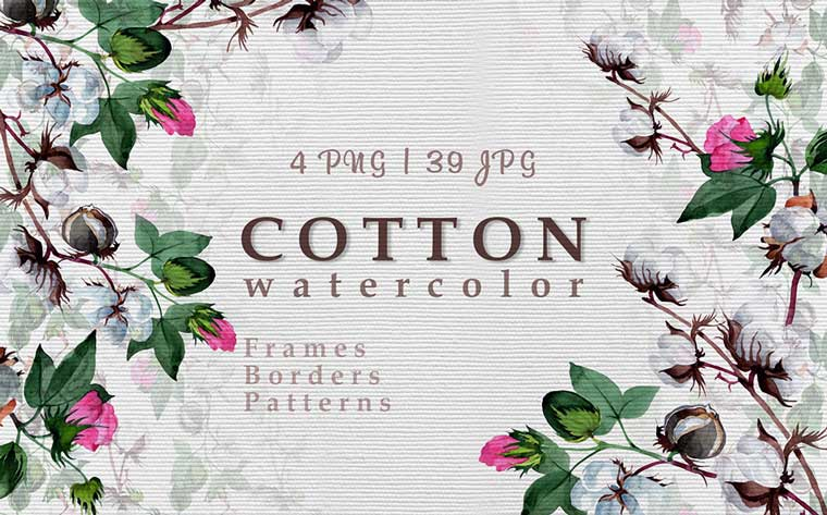 Cool Cotton PNG Watercolor botanical Illustrations