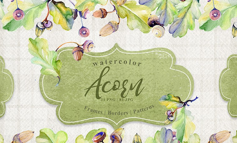forest acorn illustration
