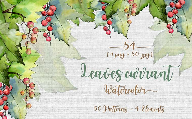 Leaves Currant PNG Watercolor Set Illustration.