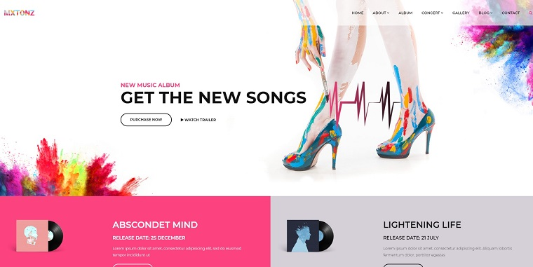 MxTonz - DJ & Music Studio WP Theme