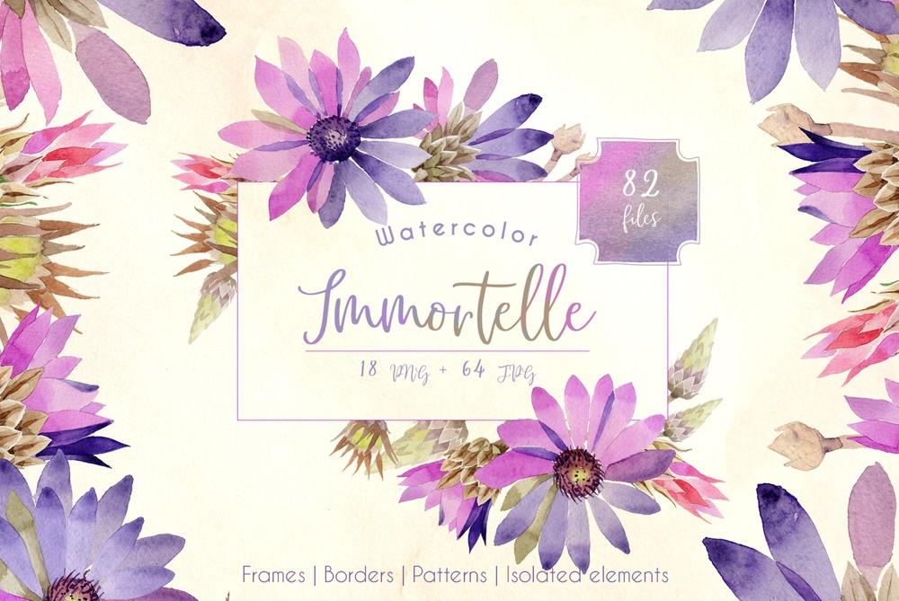 Purple Immortelle PNG Watercolor Set Illustration