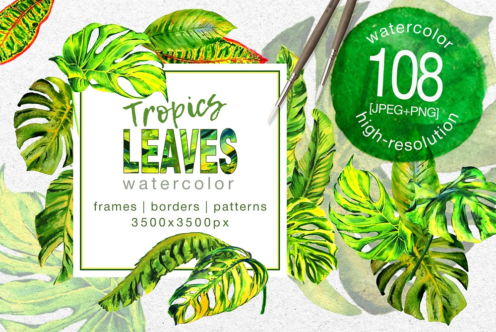 Tropics Leaves Monstera - PNG Watercolor Illustration