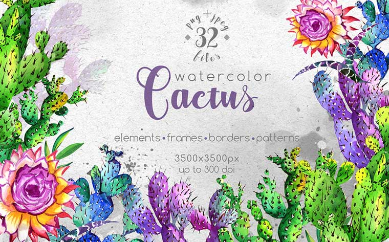 Watercolor Cactuses - PNG Wildflower Illustration.
