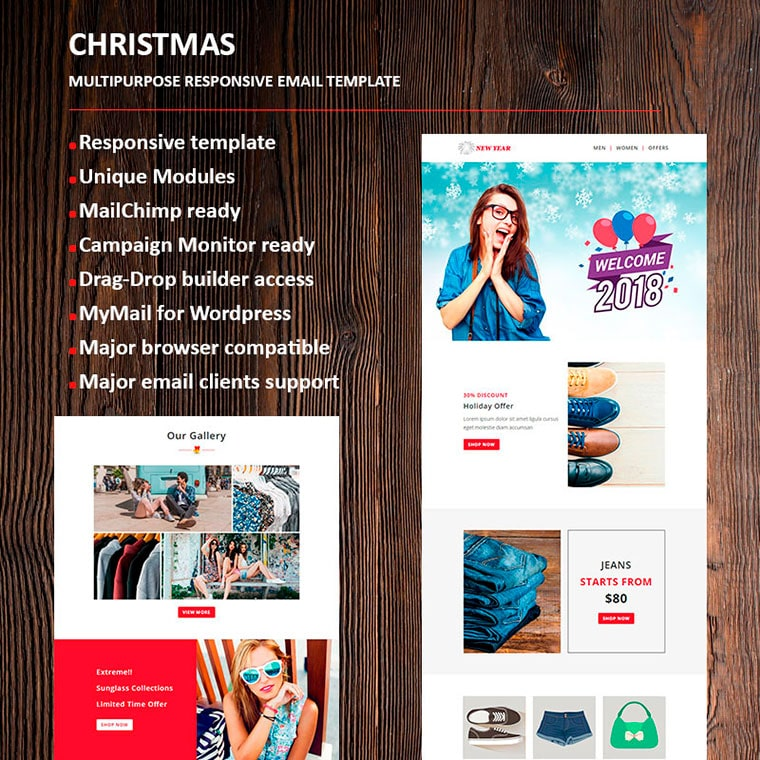 New Year Email Newsletter Template by fourdinos