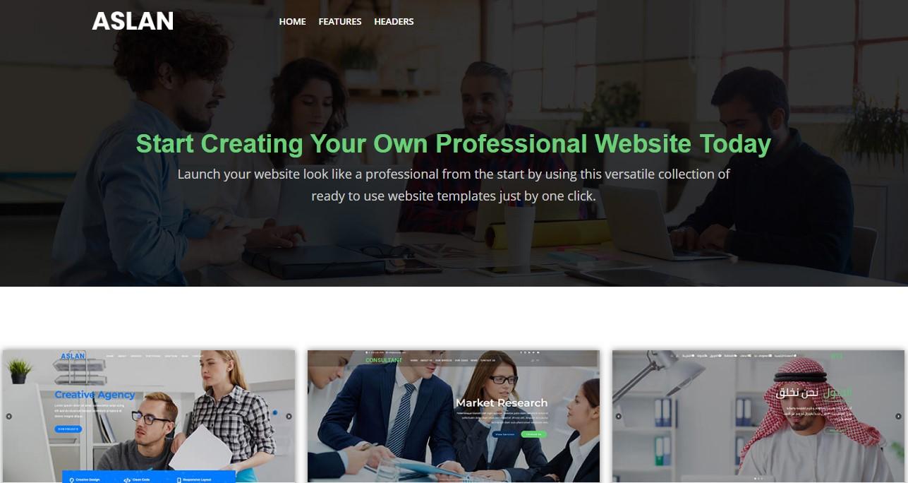 aslan website theme