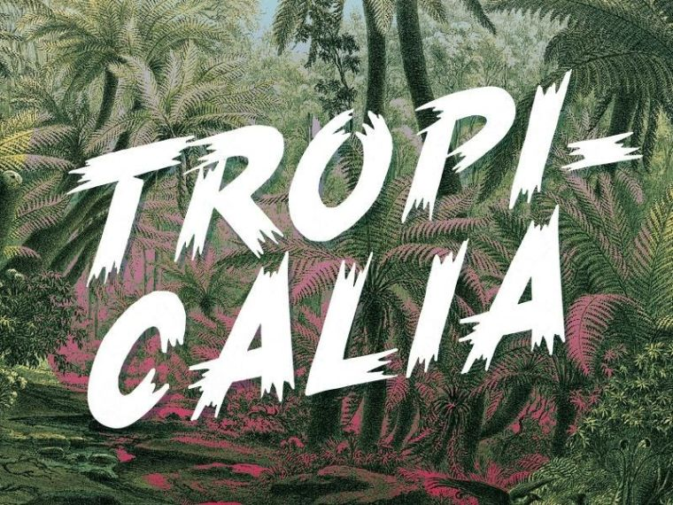 Tropicalia Brush Typeface