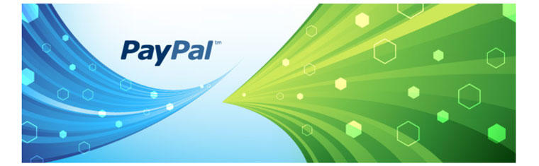 WordPress plugin Easy Paypal Payment Accept.