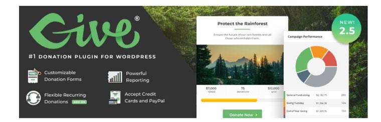 GiveWP WordPress plugin.