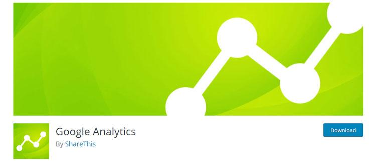WordPress plugin Google Analytics.