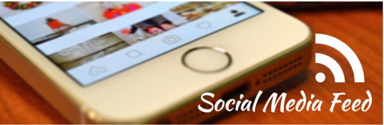 WordPress plugin Social Media Feed.