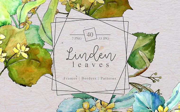 Watercolor Linden Leaves PNG set Illustration.