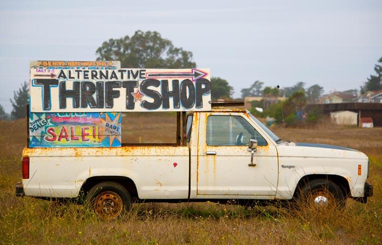 Open a thrift store online.