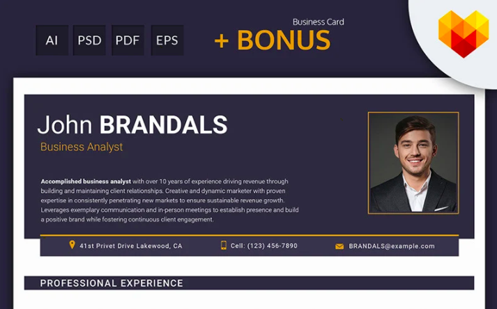 John Brandals - Business Analyst and Financial Consultant Resume Template