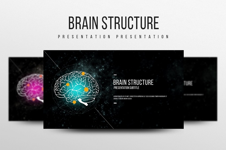 Brain Structure PowerPoint Template
