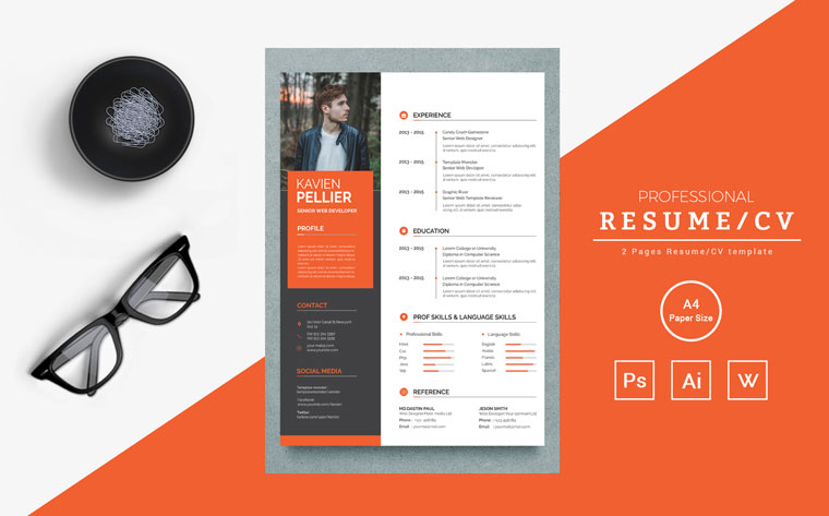 Top 20 Best Artist Resume Templates 2020 Review