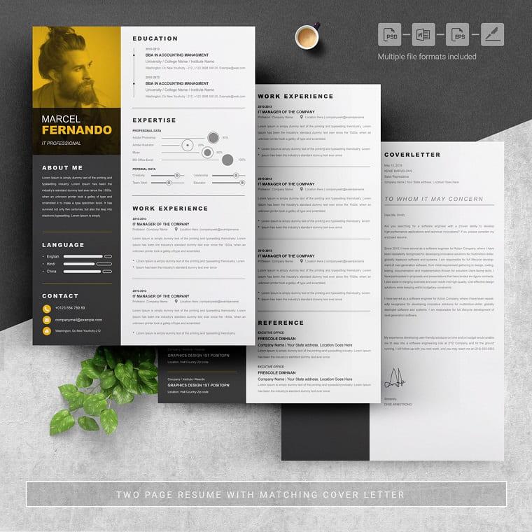 Web Designer   Freelancer   Graphics Designer   Content Writer Resume Template