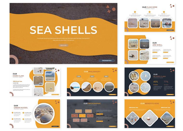 Sea Shells | PowerPoint Template