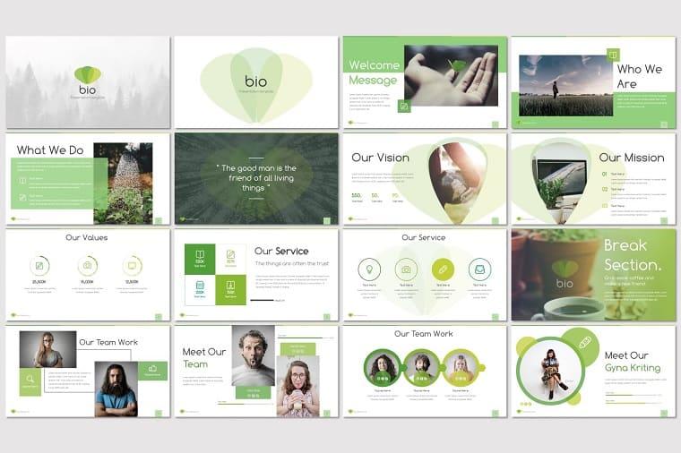 Bio - PowerPoint Template