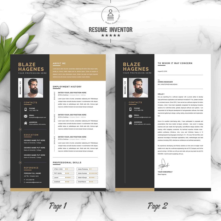 Graphic Design Resume Examples Templates 2020