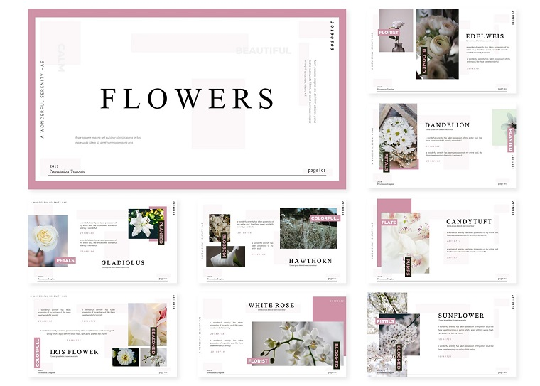 Flowers | PowerPoint Template