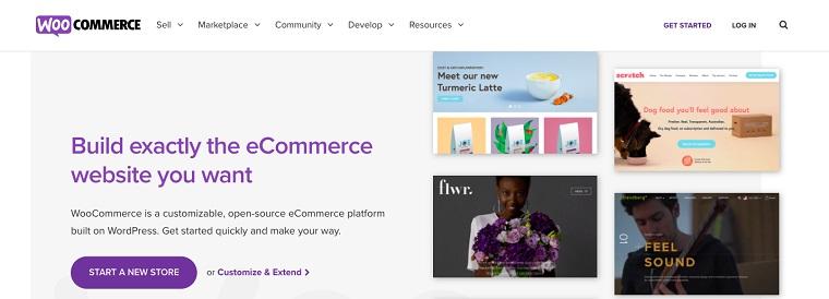 WooCommerce-eCommerce-Cost